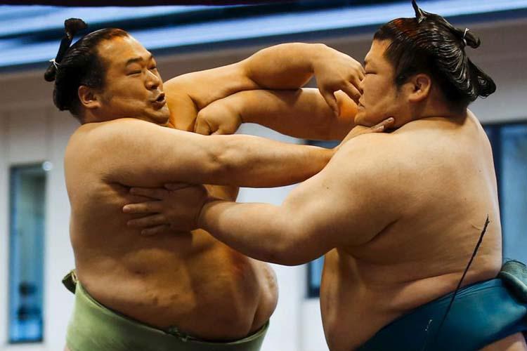 Sumo-japan