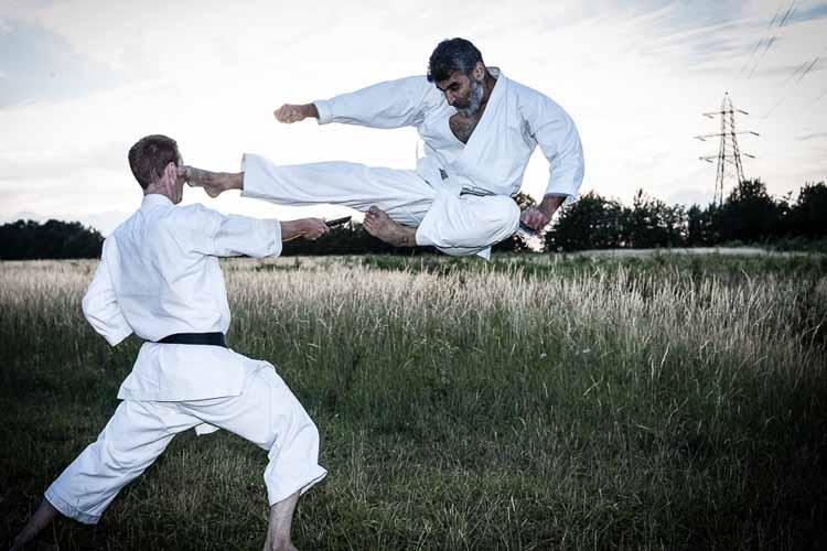 karate-pic