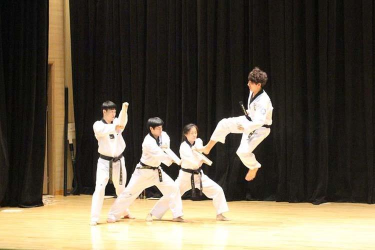 taekwondo-show